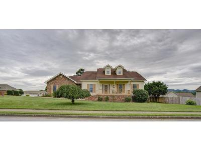 Johnson City Single Family Home For Sale: 3100 Vicksburg Rd.