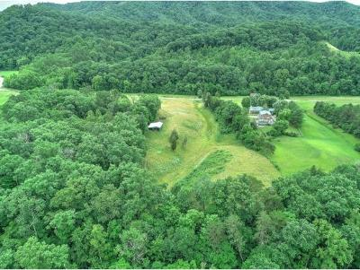 Residential Lots & Land For Sale: TBD Beech Creek Road