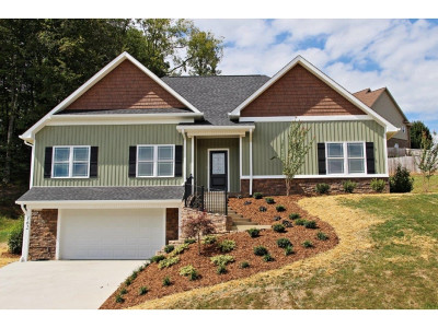 Jonesborough Single Family Home For Sale: 162 Cameron Court