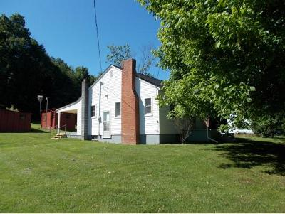 Greeneville Single Family Home For Sale: 136 Powell Street