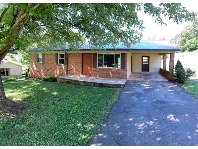 Greeneville TN Single Family Home For Sale: $134,900