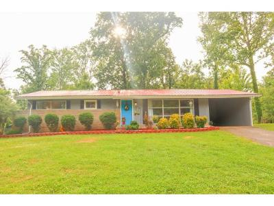 Greeneville TN Single Family Home For Sale: $119,900