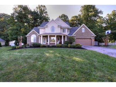 Gray Single Family Home For Sale: 124 Hillview Court