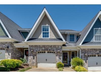 Johnson City TN Condo/Townhouse For Sale: $150,000
