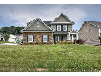 Kingsport Single Family Home For Sale: 2928 Royal Mile Divide