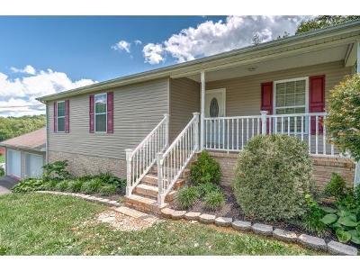 Kingsport Single Family Home For Sale: 339 Wonderland Dr.