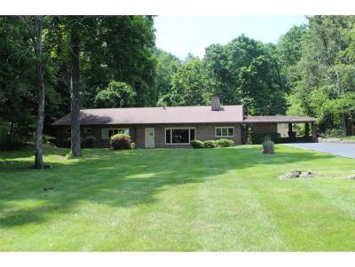 Bristol TN Single Family Home For Sale: $255,000