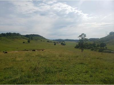 Washington-Tn County Residential Lots & Land For Sale: 385 Jackson Road