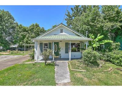 Kingsport Single Family Home For Sale: 1046 Dorothy St