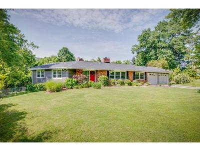 Kingsport Single Family Home For Sale: 521 Lakewood Road