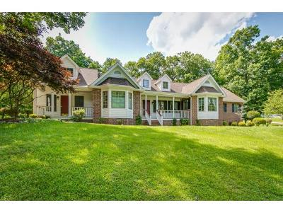 Kingsport Single Family Home For Sale: 462 Hunters Crossing Lane