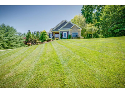 Jonesborough Single Family Home For Sale: 675 Tavern Hill Rd.