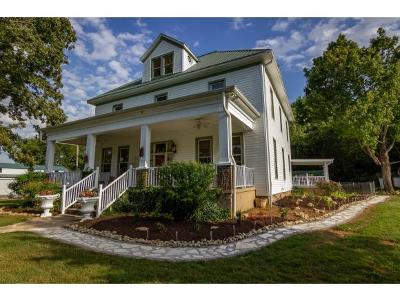 Hawkins County Single Family Home For Sale: 873 Old Highway 11w