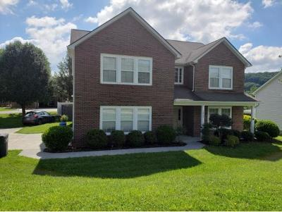 Kingsport Single Family Home For Sale: 1607 Cooks Valley Rd