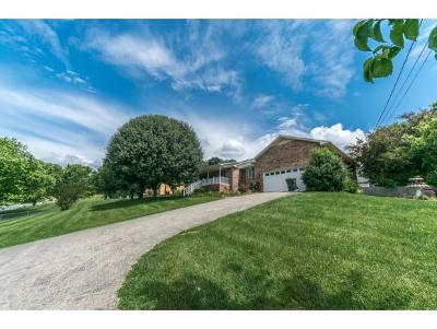 Gray Single Family Home For Sale: 396 Hog Hollow Rd