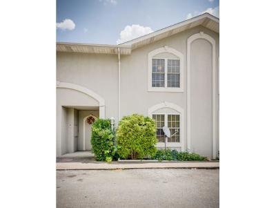 Kingsport Condo/Townhouse For Sale: 817 Fain Ave #8
