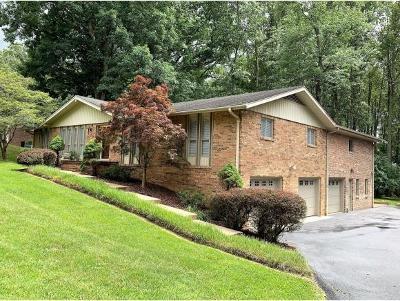 Bristol VA Single Family Home For Sale: $299,500