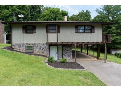 Johnson City TN Single Family Home For Sale: $149,000