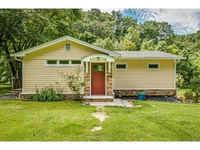Bristol Single Family Home For Sale: 921 Emmett Road