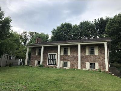 Johnson City TN Single Family Home For Sale: $164,900