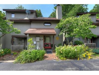 Kingsport Condo/Townhouse For Sale: 28 Willowbrook Drive #28