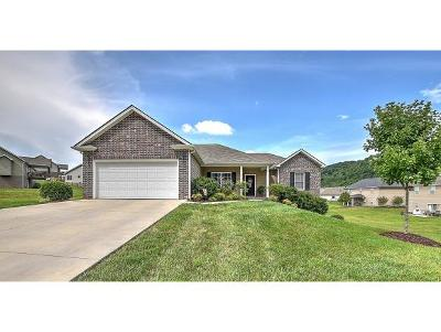 Kingsport Single Family Home For Sale: 2035 Falling Leaf