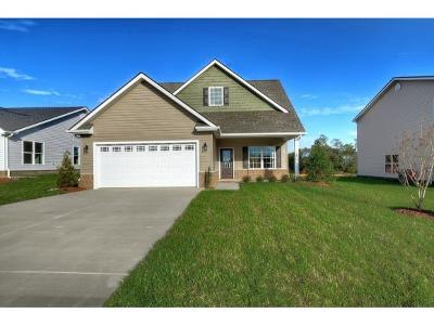 Kingsport Single Family Home For Sale: 2934 Southbridge Rd