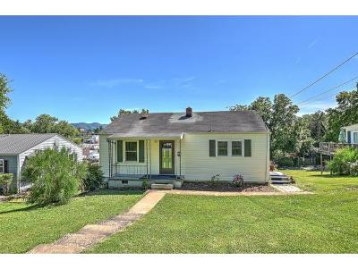 Johnson City TN Single Family Home For Sale: $69,500