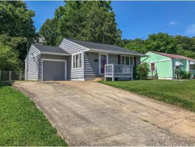Kingsport Single Family Home For Sale: 237 Edward Street