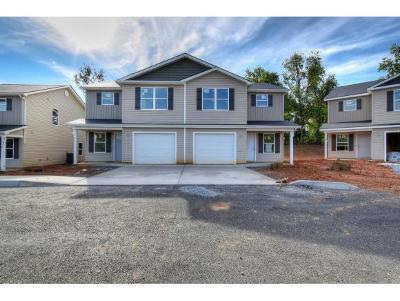 Johnson City Condo/Townhouse For Sale: 2927 Watauga Road #5