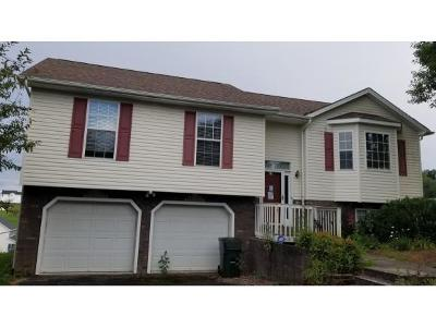 Jonesborough Single Family Home For Sale: 110 Bermuda Dr.