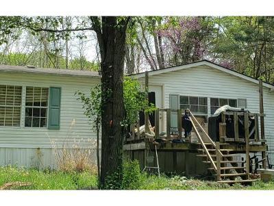 Elizabethton Single Family Home For Sale: 199 Jack Bradley