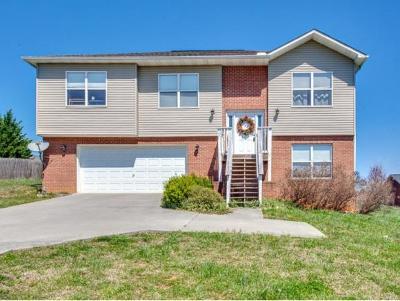 Sevier County Single Family Home For Sale: 520 N Pitner Rd