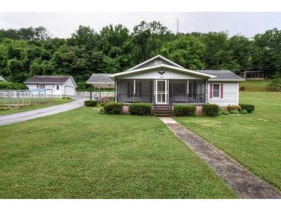 Elizabethton Single Family Home For Sale: 168 Indian Creek Road