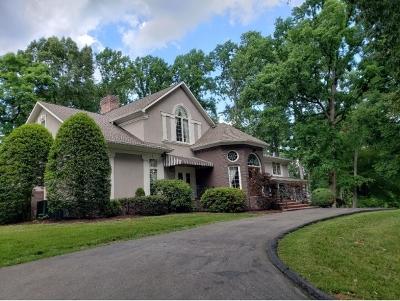 Bristol VA Single Family Home For Sale: $499,000