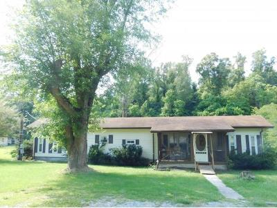 Bristol Single Family Home For Sale: 476 Deck Valley Road