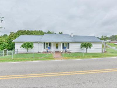 Kingsport Single Family Home For Sale: 573 Gravely Rd
