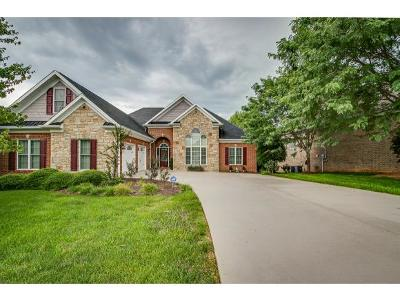 Kingsport Single Family Home For Sale: 2224 Valley Falls Ct.