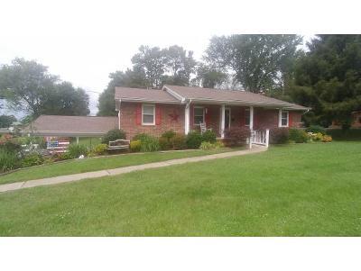 Kingsport Single Family Home For Sale: 130 Monte Vista Dr