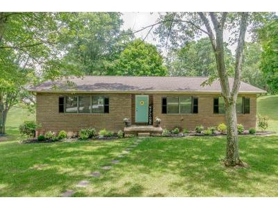 Kingsport Single Family Home For Sale: 3700 Arrowhead Trail