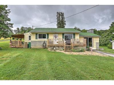 Bristol VA Single Family Home For Sale: $112,500