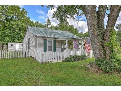 Kingsport Single Family Home For Sale: 1905 Park Street