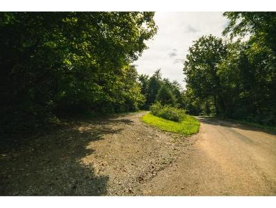 Hancock County Residential Lots & Land For Sale: 672 Winstead