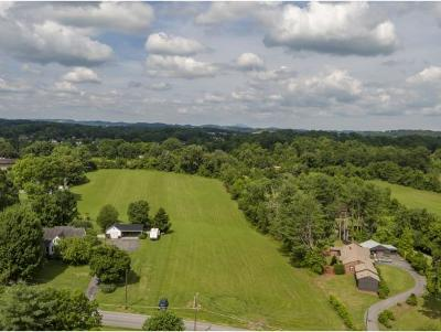 Washington-Tn County Residential Lots & Land For Sale: 133 Gray Station Rd