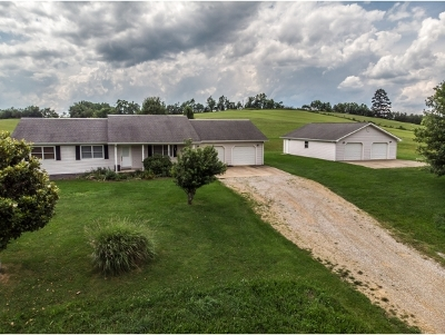 Greene County Single Family Home For Sale: 2785 Ripley Island Road
