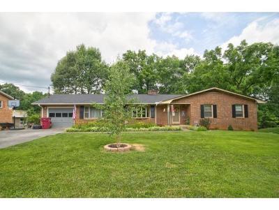 Johnson City Single Family Home For Sale: 710 Judith Drive