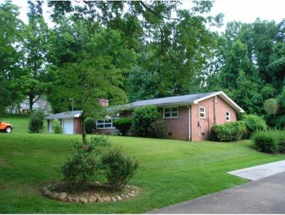 Johnson City Single Family Home For Sale: 1309 Iris Ave