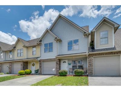 Johnson City Condo/Townhouse For Sale: 415 Old Grist Mill Blvd #415
