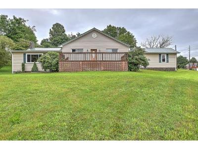 Bristol Single Family Home For Sale: 2438 King Mill Pike