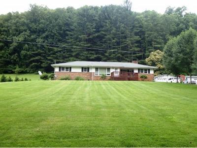 Roan Mountain Single Family Home For Sale: 385 Heaton Creek Rd